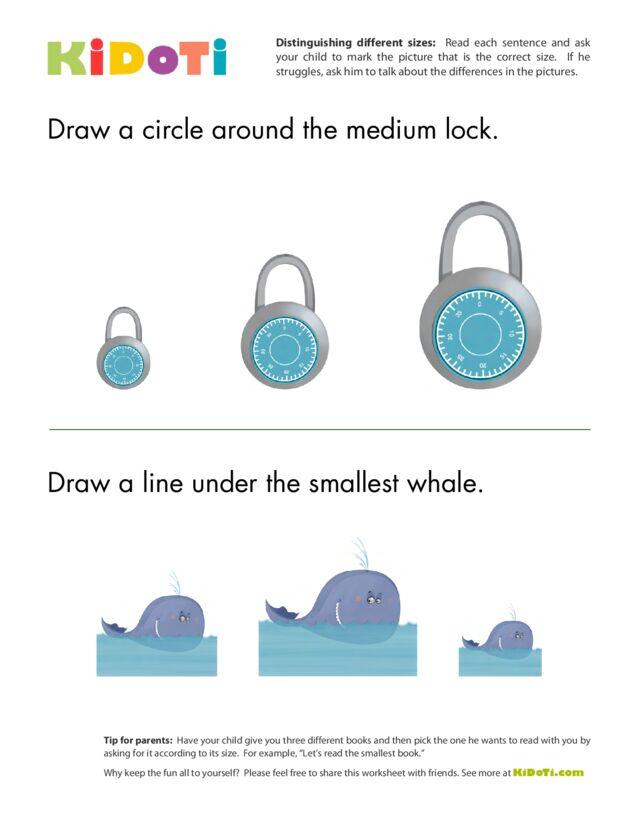 Distinguishing Different Sizes 3