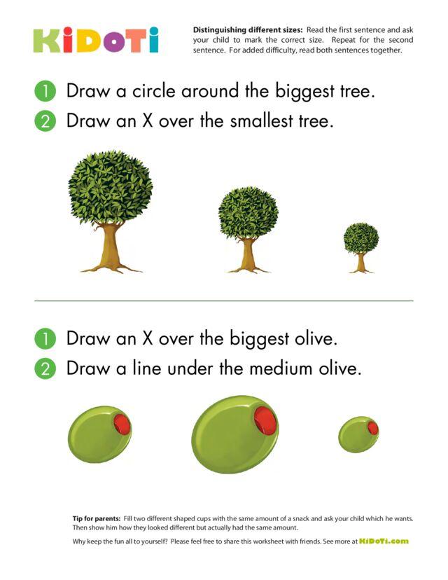 Distinguishing Different Sizes (4)