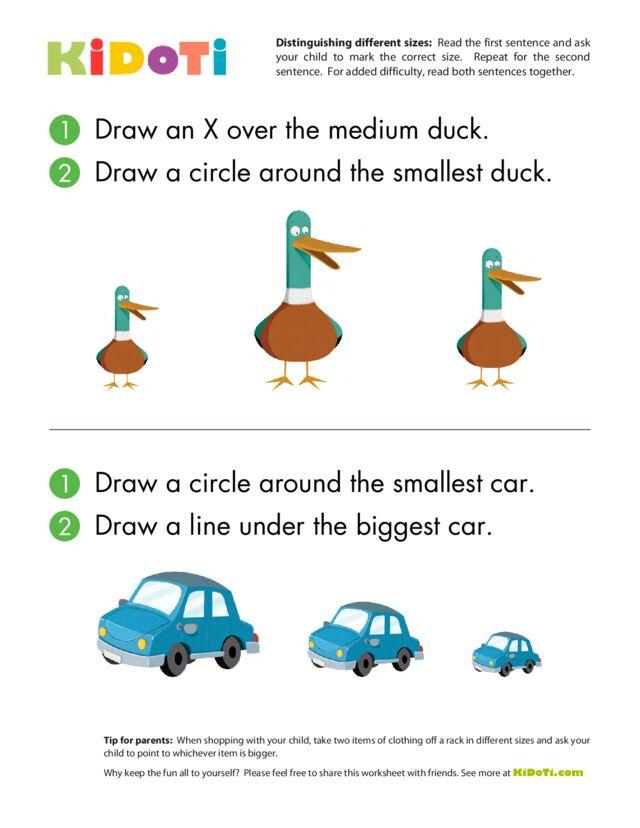 Distinguishing Different Sizes (5)