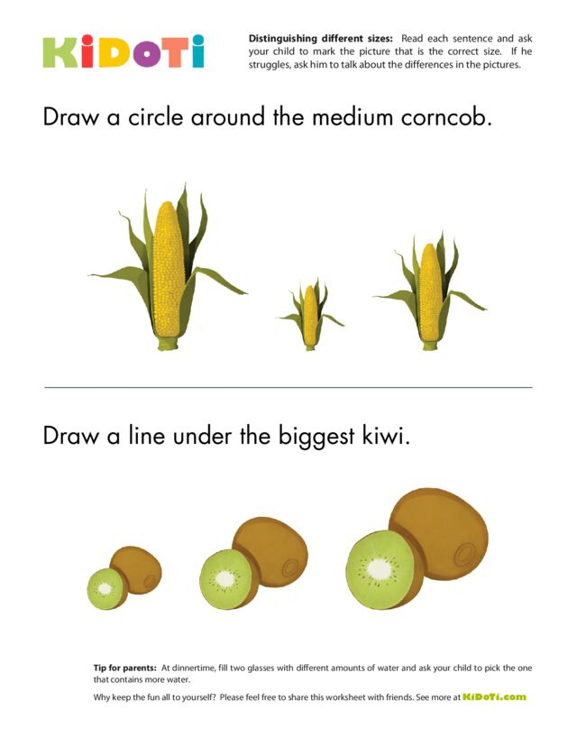 Distinguishing Different Sizes (6)