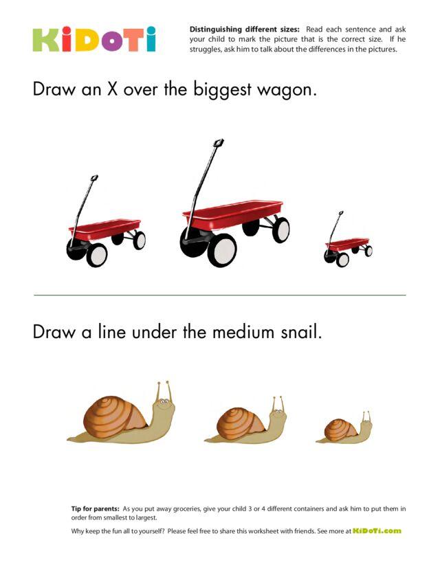Distinguishing Different Sizes (7)