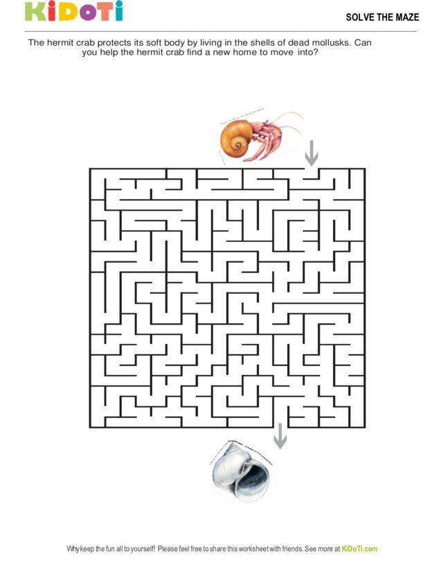 Hermit Crab Maze