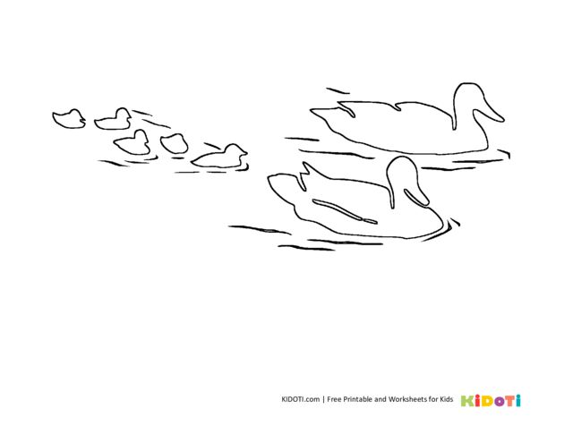 thumbnail of duck coloring pages-13