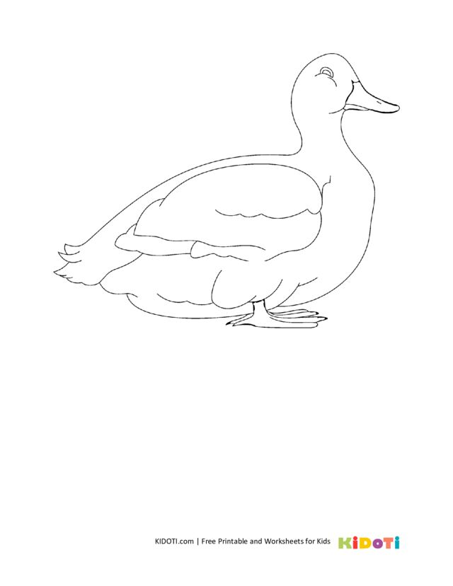 Farm duck coloring pages